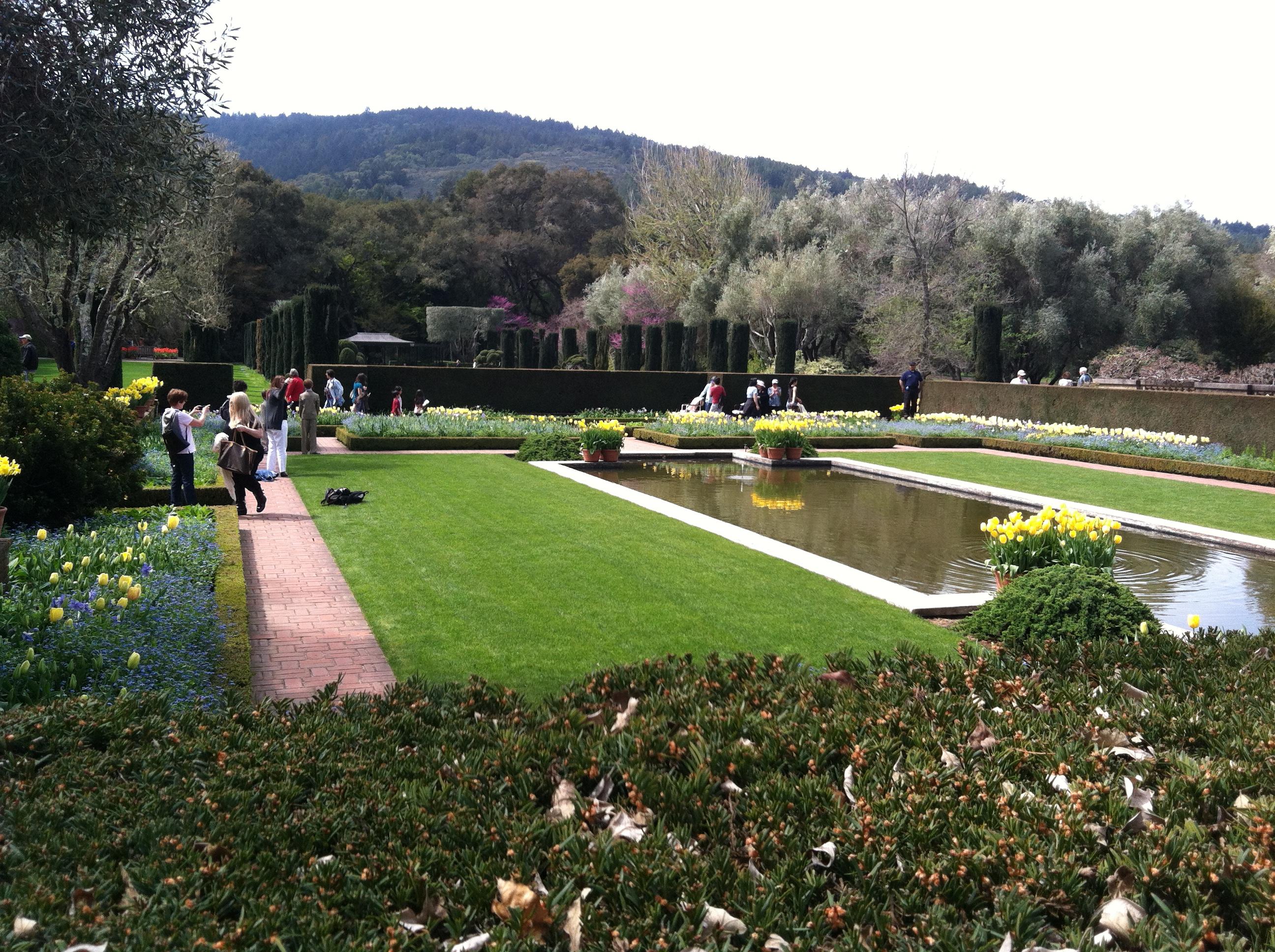 Filoli Gardens Paulger 39 S Plants Bulbs
